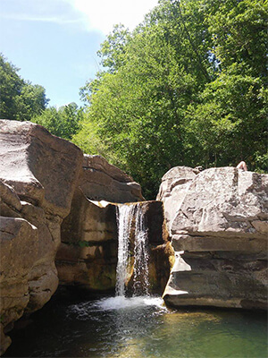 Farma Creek's Canyons