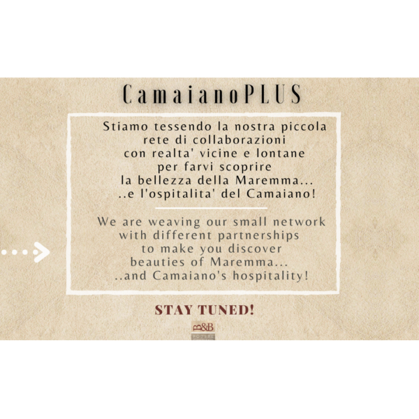 CamaianoPLUS